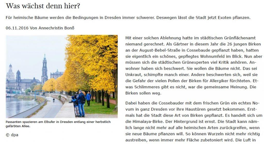 Quelle: http://www.sz-online.de/nachrichten/was-waechst-denn-hier-3533611.html?desktop=true